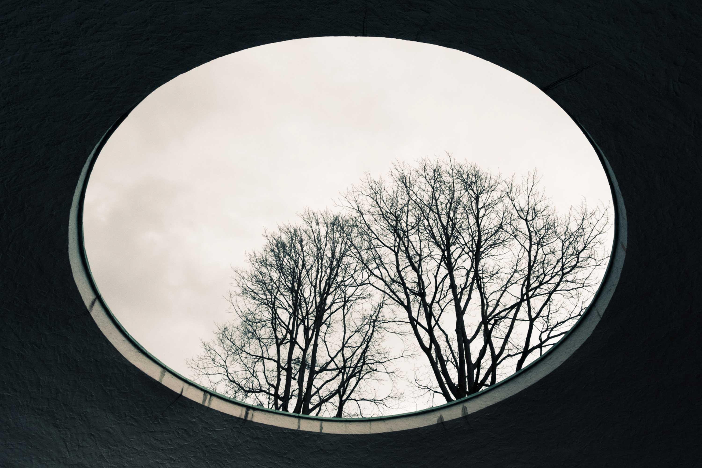 In Circles 4